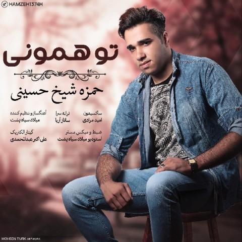دانلود موزیک جدید حمزه شیخ حسینی تو همونی