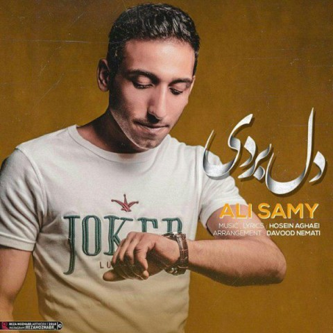 دانلود موزیک جدید علی سامی دل بردی