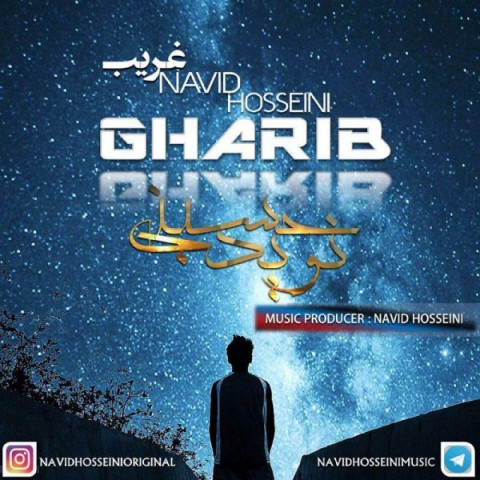 دانلود موزیک جدید نوید حسینی غریب