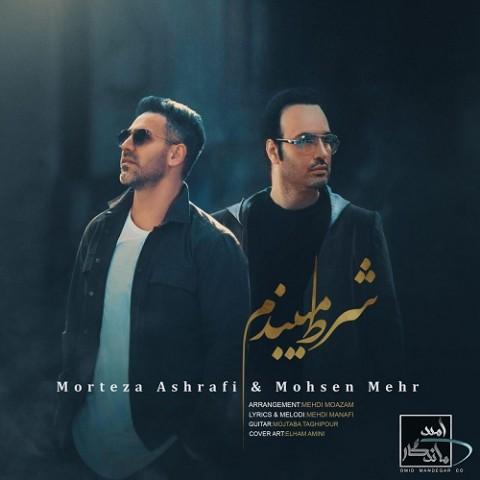 دانلود موزیک جدید مرتضی اشرفی و محسن مهر شرط میبندم