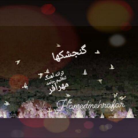 دانلود موزیک جدید حامد مهرآفر گنجشکها