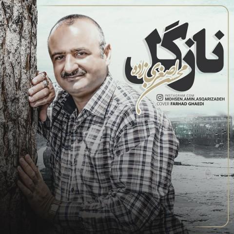 دانلود موزیک جدید محسن اصغری زاده نازگل