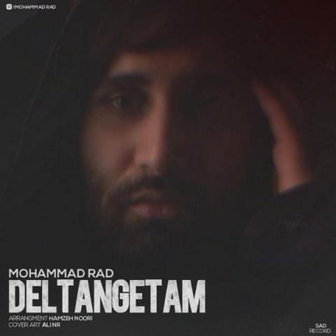 دانلود موزیک جدید محمد راد دلتنگتم