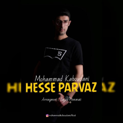 دانلود موزیک جدید محمد کبودانی حس پرواز