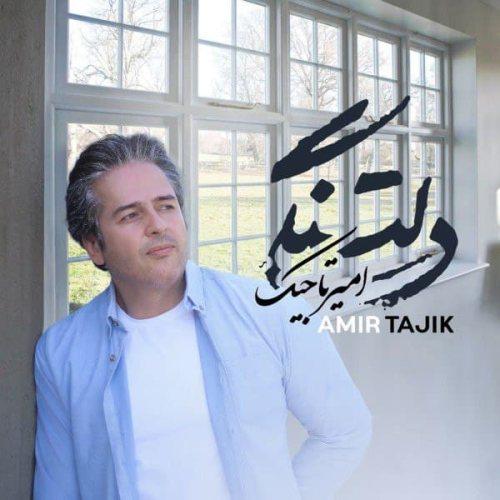 دانلود موزیک جدید امیر تاجیک دلتنگی